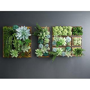 多肉植物墙3d模型