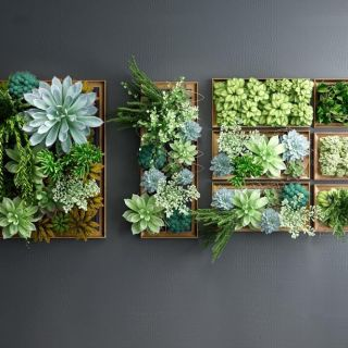 多肉<font class='myIsRed'>植物</font>墙3d模型
