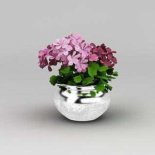 室内装饰花盆盆栽3d模型3d模型
