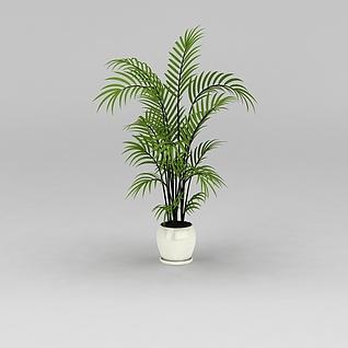 室内落地绿植3d模型3d模型