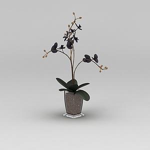 花藝花盆模型3d模型