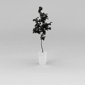 3d<font class='myIsRed'>花盆</font>树模型