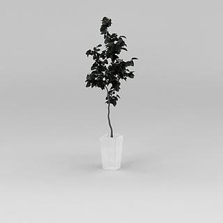 <font class='myIsRed'>花盆</font>树3d模型
