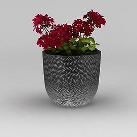 红色花卉盆栽3d模型
