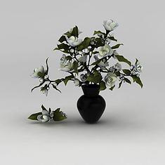 白玫瑰花卉3D模型3d模型