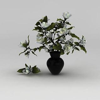 白玫瑰花卉3d模型