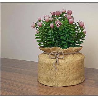 粉红玫瑰花包3d模型