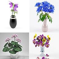 盆景植物花瓶3D模型3d模型