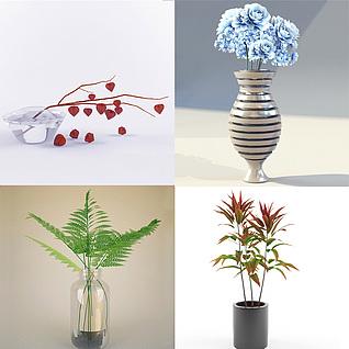 室内花草植物集合3d模型