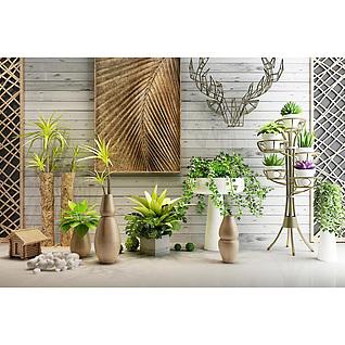 现代室内植物盆栽3d模型