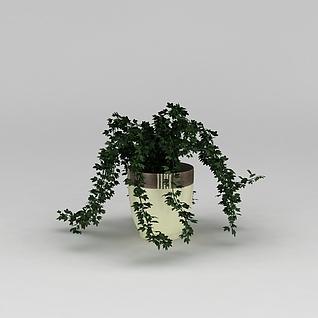 阳台花盆绿植3d模型