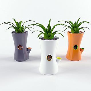 创意芦荟植物盆景3d模型