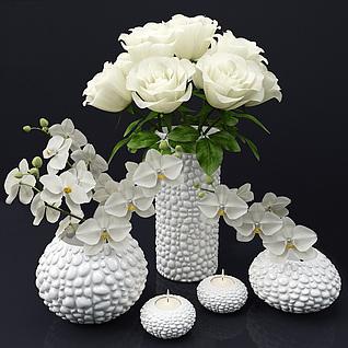 家居装饰花卉3d模型