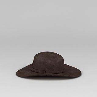 咖啡色帽子3d模型