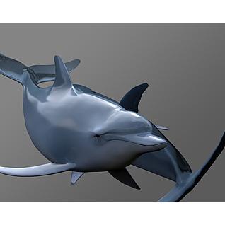 海豚3d模型