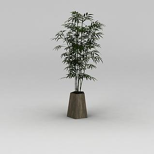 庭院竹子盆栽3d模型