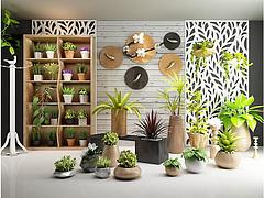 绿植盆栽实木花架组合模型3d模型