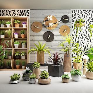 绿植盆栽实木花架组合3d模型
