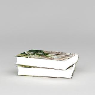 小说读物3d模型