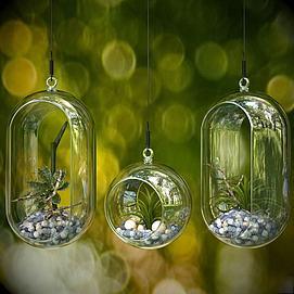 悬挂式玻璃花瓶植物3d模型