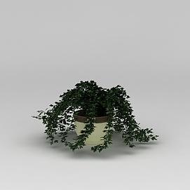 庭院<font class='myIsRed'>花盆</font>绿植3d模型