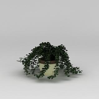 庭院花盆绿植3d模型