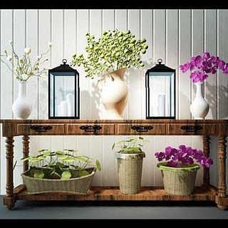 花卉盆景植物组合3d模型