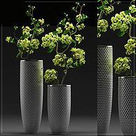 现代盆景树组合3D模型3d模型