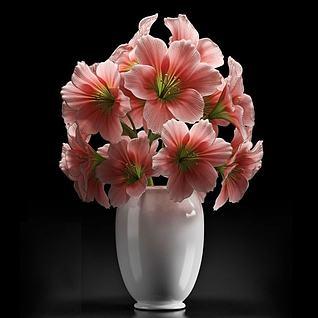 植物花卉盆景3d模型