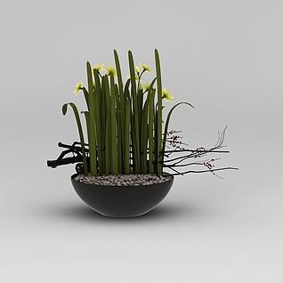 花卉盆栽3d模型