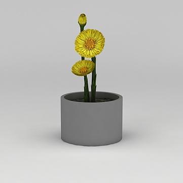 3D迷你黃色小花模型