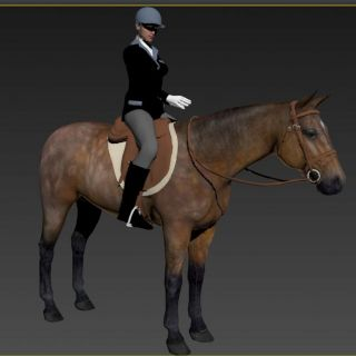 骑马的<font class='myIsRed'>女人</font>3d模型