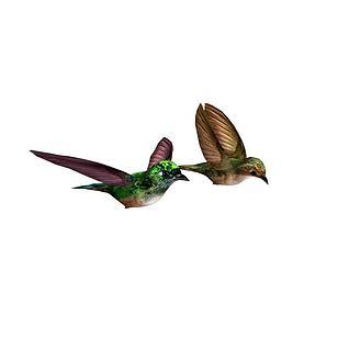 2只小鸟3d模型3d模型