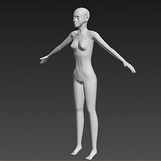 仿真女性人体3d模型