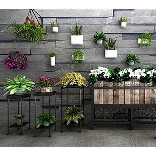 庭院植物装饰墙3d模型