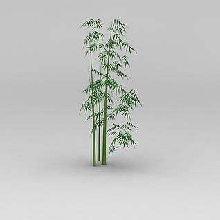 竹子3d模型