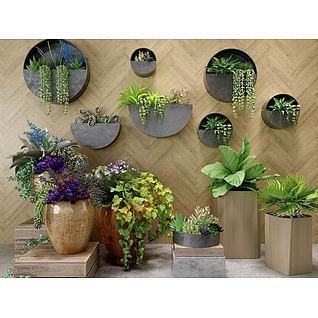 绿植盆栽组合3d模型3d模型
