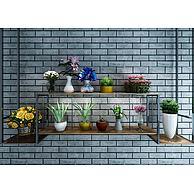 墙壁花架植物盆栽组合3D模型3d模型