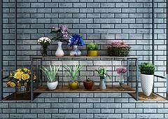 墙壁花架植物盆栽组合模型3d模型