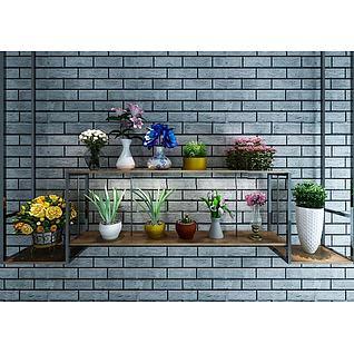 墙壁花架植物盆栽组合3d模型