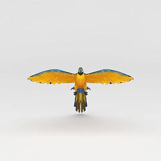 鹦鹉3d模型3d模型