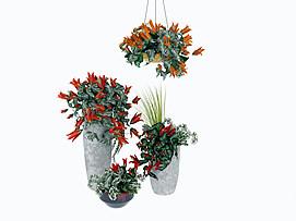 精美装饰花卉3d模型