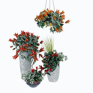 3d精美装饰花卉模型