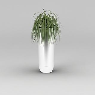 室内绿植吊兰3d模型