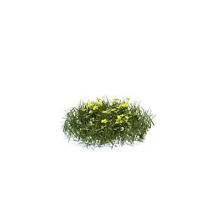 花草3d模型