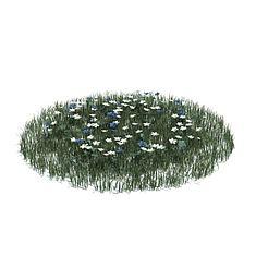 花草3D模型3d模型