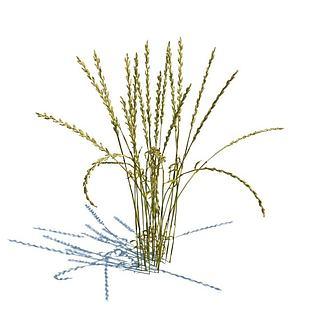 稻子模型3d模型