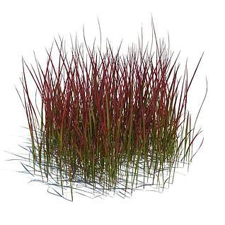 青草丛3d模型