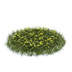 花圃花草3D模型3d模型