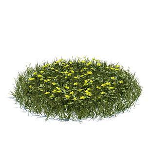 花圃花草3d模型
